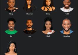 Big Brother Naija 2019 Week 7 Voting Poll